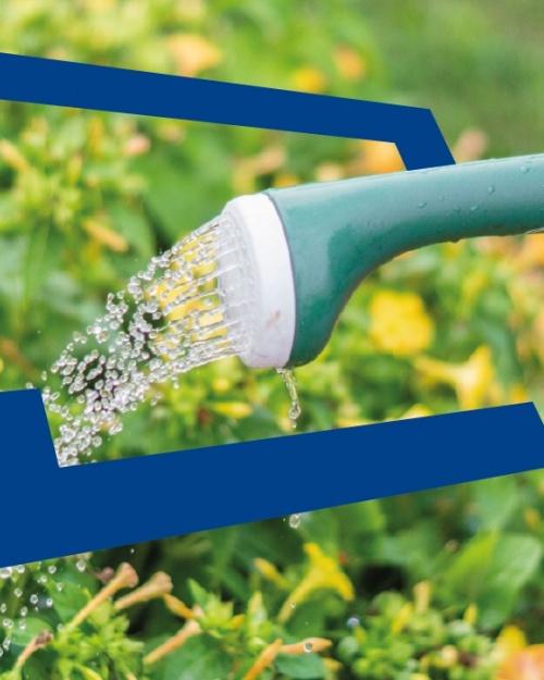 Bespaartip 19: Vang regenwater op!