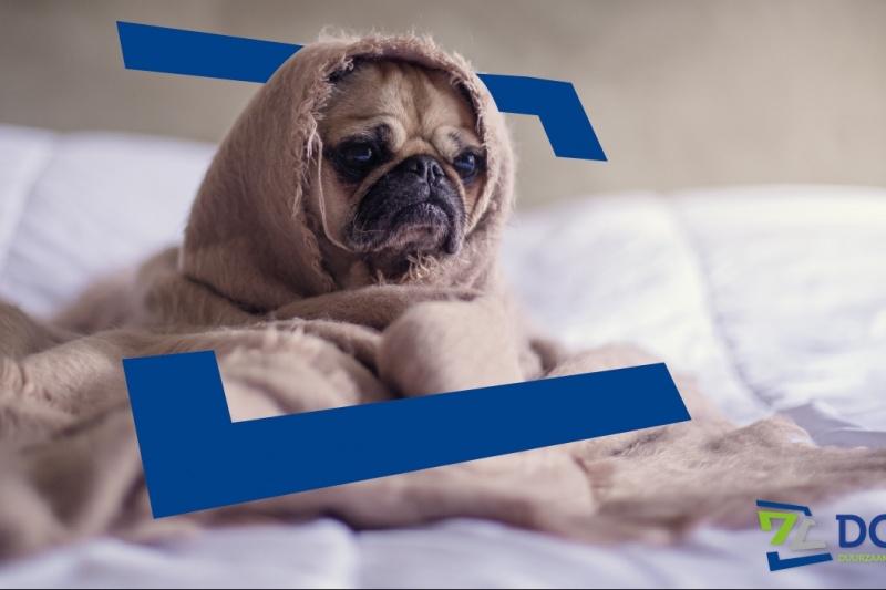 Bespaartip 14: Verwarm de slaapkamer niet!